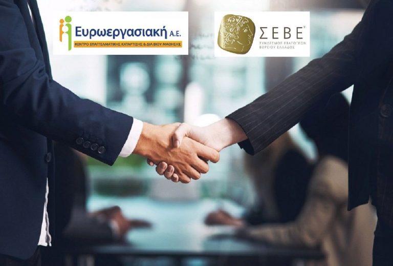 euroergasiaki-seve